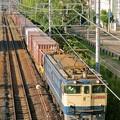 Photos: 74レ【EF65 2068牽引】