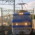 Photos: 4076レ【EF510-511牽引】