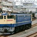 Photos: 配1792レ【EF65 2074単機】