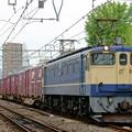 Photos: 5087レ【EF65 2065牽引】