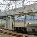Photos: 単1780【EF66 117】