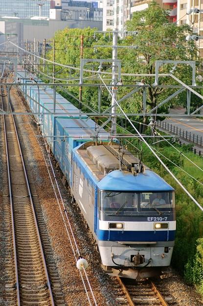臨8056レ【EF210-7牽引】