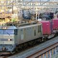 Photos: 84レ【EF510-509牽引】