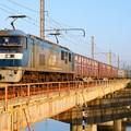 Photos: 2065レ【EF210-160牽引】
