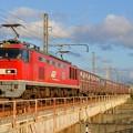 4070レ【EF510-5牽引】