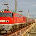 Photos: 4070レ【EF510-1牽引】
