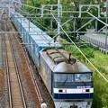 臨8056レ【EF210-123牽引】