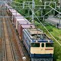 74レ【EF65 2083牽引】