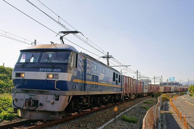 5070レ【EF210-305牽引】