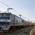 Photos: 5070レ【EF210-305牽引】