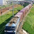 Photos: 5071レ【EF210-154牽引】