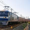 Photos: 5064レ【EF210-15牽引】