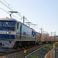 Photos: 2070レ【EF210-319牽引】