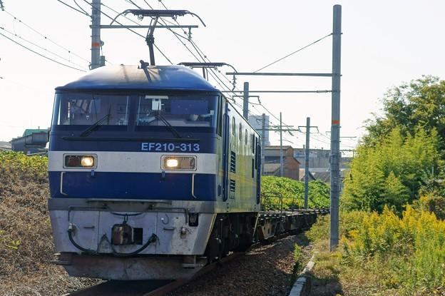 2086レ【EF210-313牽引】