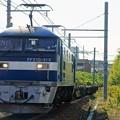 Photos: 2086レ【EF210-313牽引】