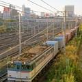 74レ【EF65 2085牽引】