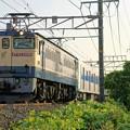 都営地下鉄6500形 甲種輸送【EF65 2096牽引】
