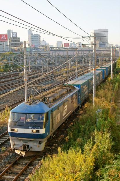 臨8056レ【EF210-17牽引】