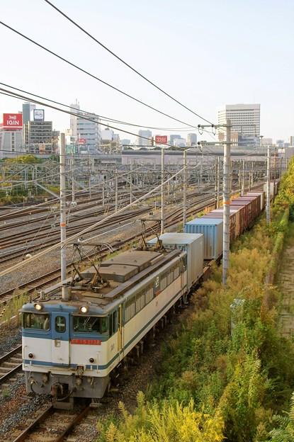 74レ【EF65 2138牽引】