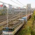Photos: 74レ【EF65 2138牽引】