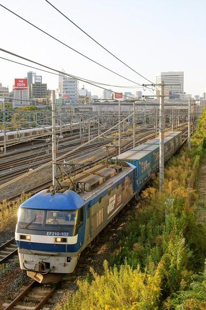 Photos: 臨8056レ【EF210-102牽引】
