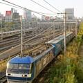 臨8056レ【EF210-102牽引】