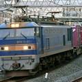 Photos: 84レ【EF510-504牽引】