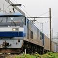 1055レ【EF210-128牽引】