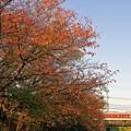 Photos: 近鉄大阪線@大和川