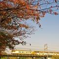 Photos: 近鉄特急@大和川