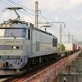 Photos: 83レ【EF510-509牽引】