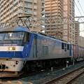 2065レ【EF210-105牽引】