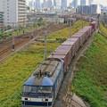 Photos: 5071レ【EF210-304牽引】