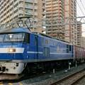 Photos: 2065レ【EF210-107牽引】