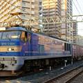 Photos: 4070レ【EF510-504牽引】