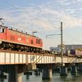 Photos: 4071レ【EF510-14牽引】