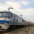 Photos: 3050レ【EF210-302牽引】