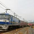 1072レ【EF210-313牽引】