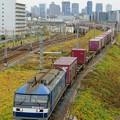 Photos: 5071レ【EF210-311牽引】