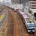 Photos: 5070レ【EF210-140牽引】