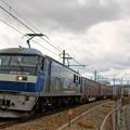 Photos: 5070レ【EF210-156牽引】