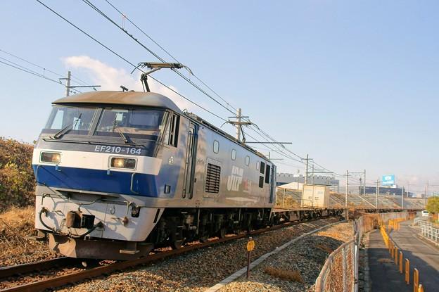 1050レ【EF210-164牽引】