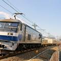 Photos: 1050レ【EF210-164牽引】