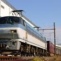 Photos: 81レ【EF66 132牽引】