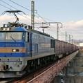 Photos: 83レ【EF510-503牽引】