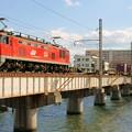 Photos: 4071レ【EF510-6牽引】