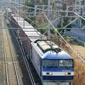 Photos: 5064レ【EF210-2牽引】