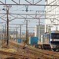 Photos: 1050レ【EF210-167牽引】