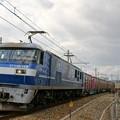 Photos: 1062レ【EF210-113牽引】