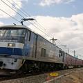 Photos: 5074レ【EF210-152牽引】
